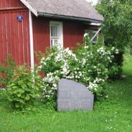 Дачный домик Игоря Северянина в Тойла-Ору. Виды садово-паркового ансамбля усадьбы купца Елисеева в Тойла-Ору.