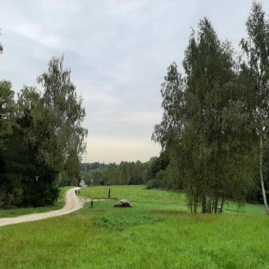 Окрестности Шахматова. Дорога из усадьбы